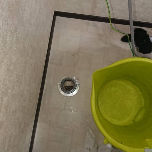 洗濯機の下の排水口